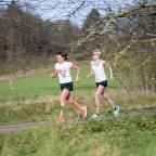 Wie du zum Läufer wirst